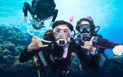 Leer nu duiken
